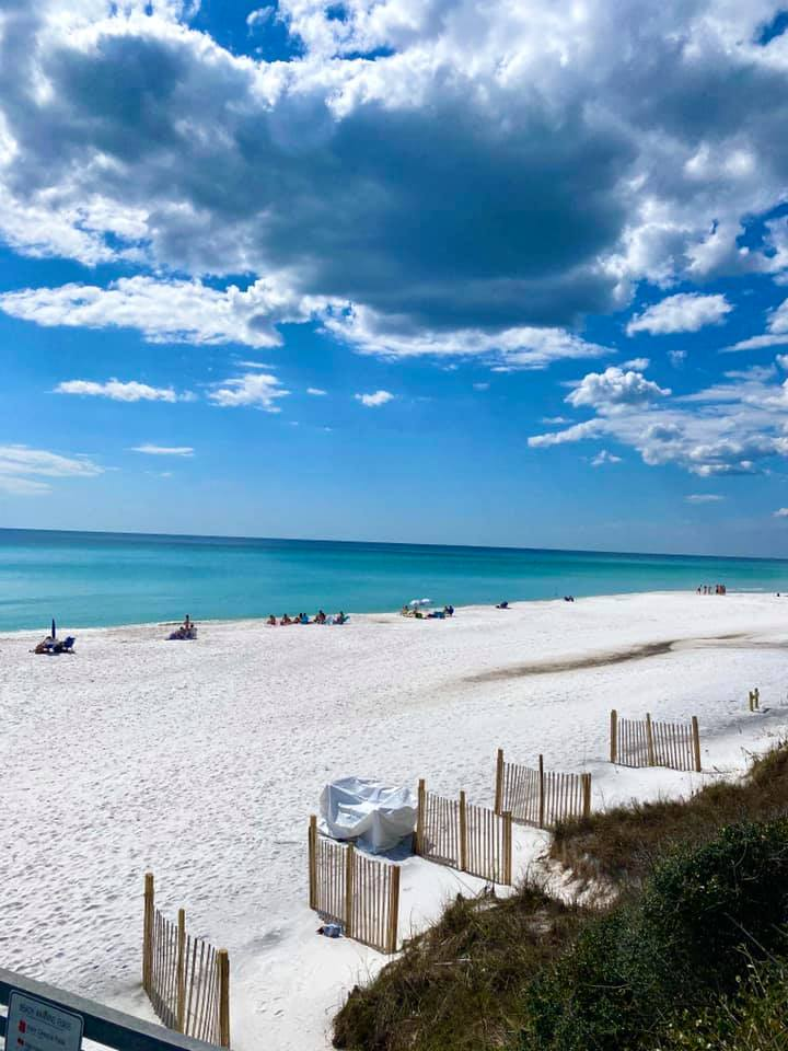 The beach behind One Seagrove Place